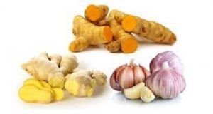 Garlic Ginger Turmeric